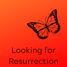 A silhouette of a butterfly with the title Looking for Resurrection below